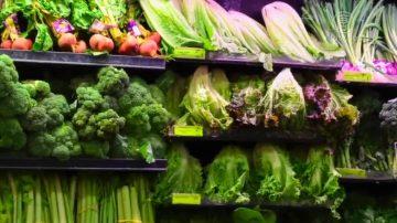 生菜携大肠杆菌 源自加州中部农场