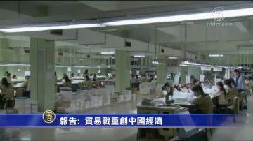 【禁闻】报告: 贸易战重创中国经济