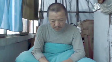 """【禁闻】""""大象席地而坐"""" 咆哮中国社会现象"""