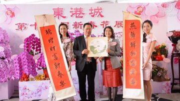 猪年花展 香港巨型兰花瀑布吸睛