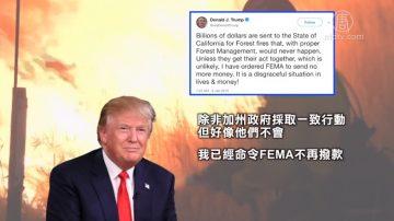 再批加州森林管理不当 川普撤销联邦拨款
