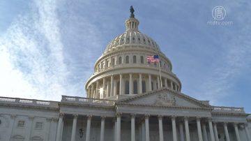 美参院提案欲解政府关门僵局 本周投票