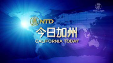 【今日加州】1月11日完整版