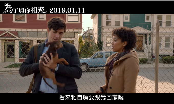 《为了与你相聚》影评:感人催泪的宠物题材喜剧