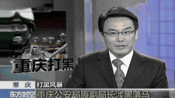 """央视名主持张羽离职 被曝江泽民座前""""小鬼"""""""