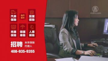 【广告】Dorotea Tuzon 保险团队  招聘未来保险代理人