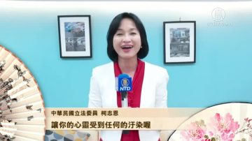 中华民国立法委员祝新唐人观众新年如意(合集)