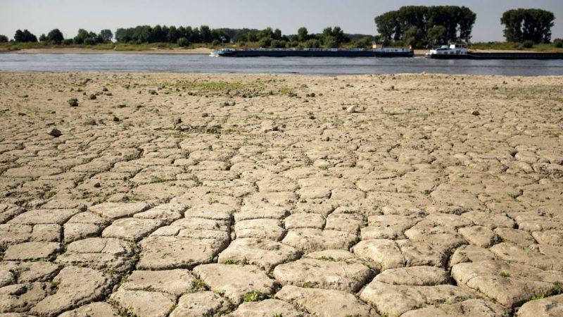 地球有记录以来 最热全在最近4年
