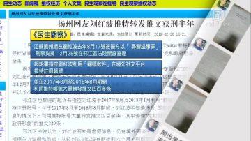 扬州网友刘红波转发推文获刑半年