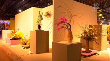 世界最大费城室内花展 展现花之魅力