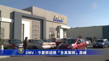"""DMV:今夏将迎换""""全真驾照""""高峰"""