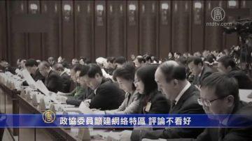 【禁闻】政协委员吁建网络特区 评论不看好