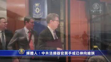 【禁闻】媒体人:中共活摘器官黑手或已伸向维族