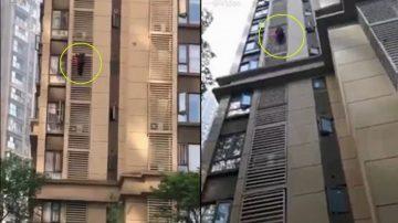 四川84岁老婆婆徒手爬楼 从14楼外墙下到5楼(视频)