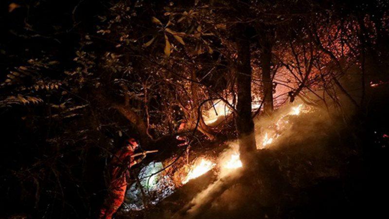 四川救山火夺31条命内幕 令人惊诧 还有11网民被抓 两周17起爆炸山火啥原因